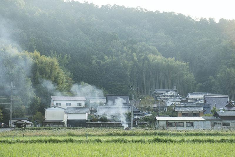 霧の朝 兵庫県丹波篠山市