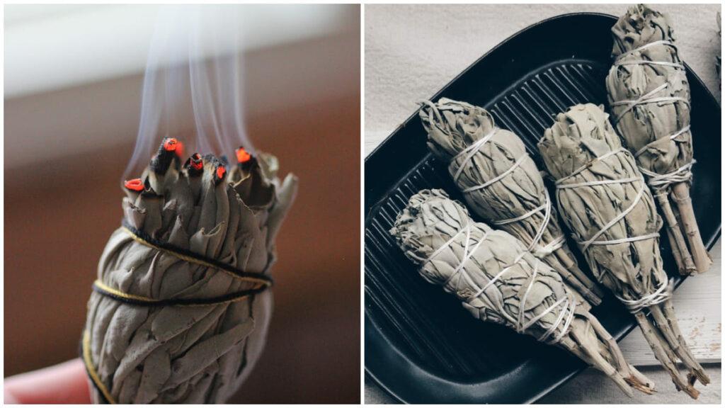 鼠尾草如何燒?5 大淨化功效+自然療法驅趕負能量