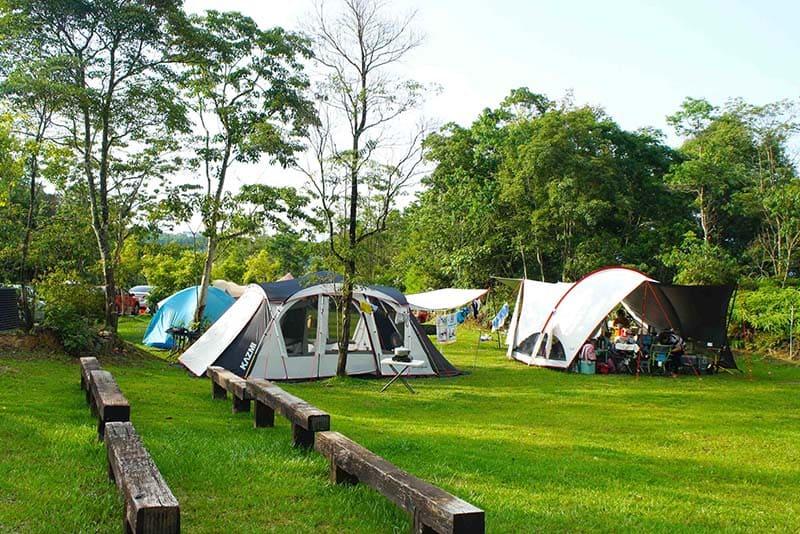 南投露營地點:樂活森林農場