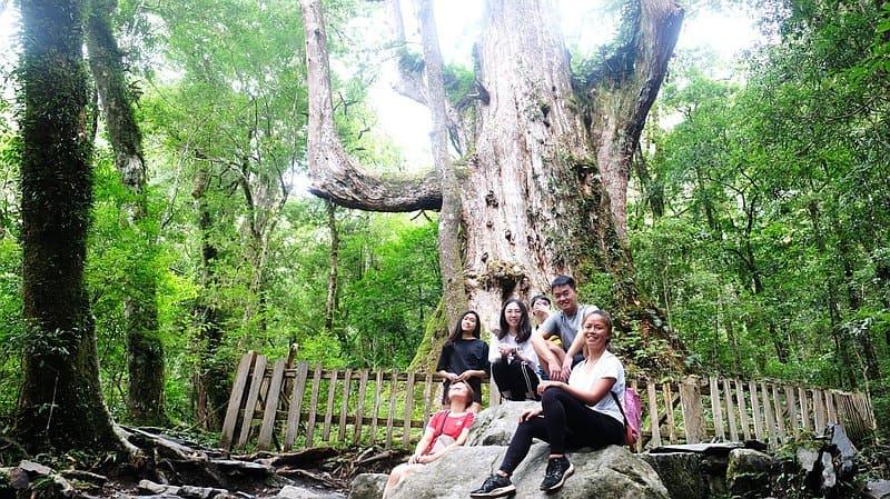 戶外露營親子活動體驗